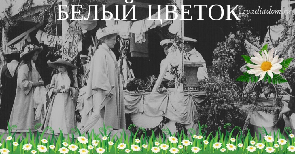 белый цветок в Ливадии,